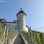 Der Kanton Schaffhausen: Umgeben von der Bundesrepublik Deutschland