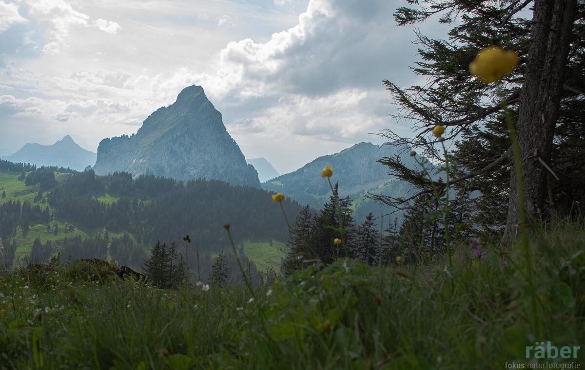 Der Grosse Mythen im Kanton Schwyz