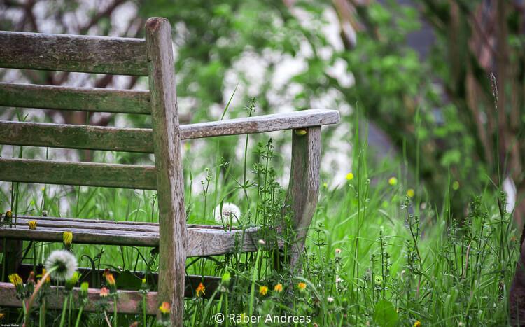 Naturgarten - Mitten drin im Leben