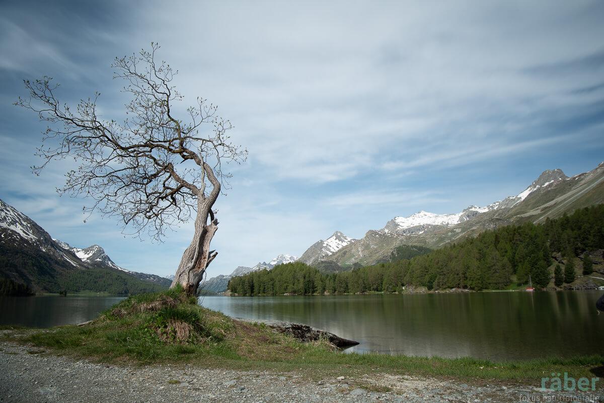 Wunderschöne Landschaft am Silsersee